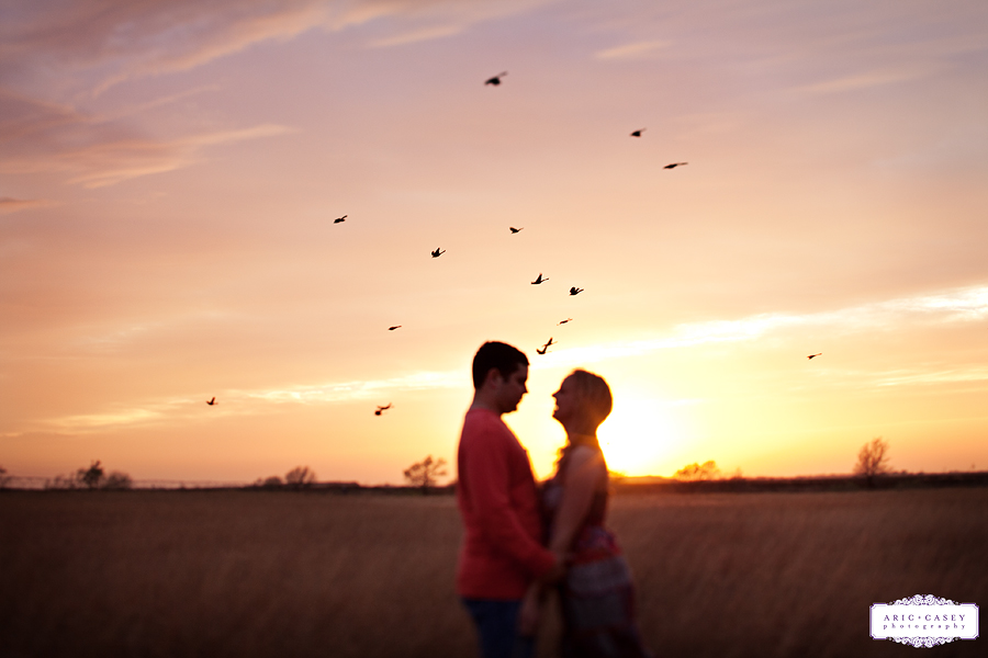 birds flying over lovers during engagement session lubbock wedding and engagement photographer